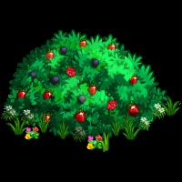 Berry Bush PNG Transparent Berry Bush.PNG Images..