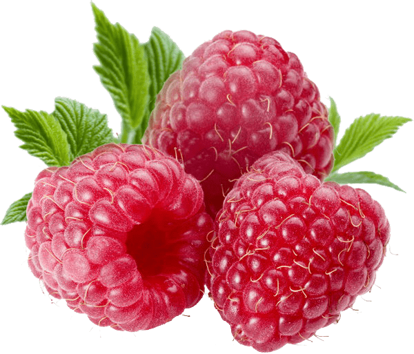Download Free png berries png file.