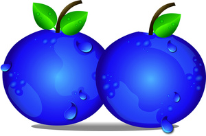 Blueberries Clipart.