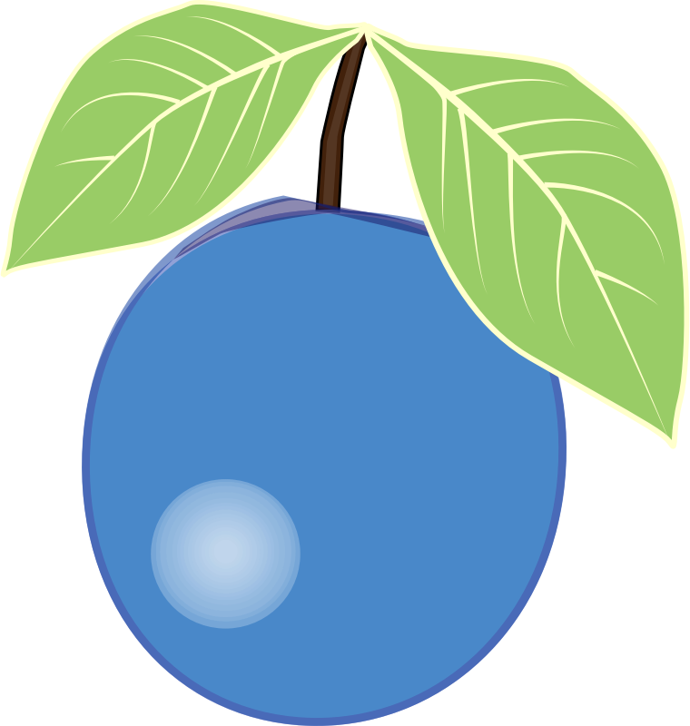 Blueberry clipart.