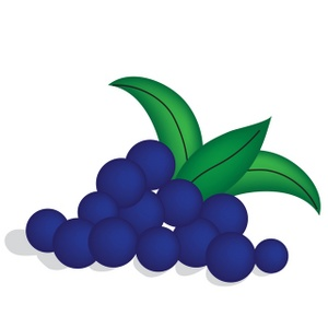 Blueberry Clipart & Blueberry Clip Art Images.