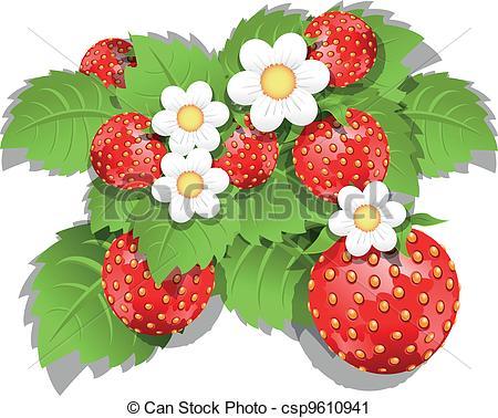 Vector Clip Art of strawberry bush.