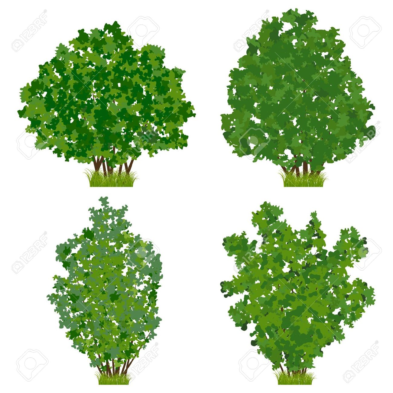 berry bush clipart clipground bushes clipart bushes clipart free