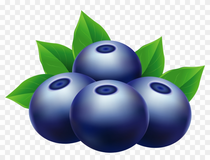 Clip Art Blueberry Png, Transparent Png.