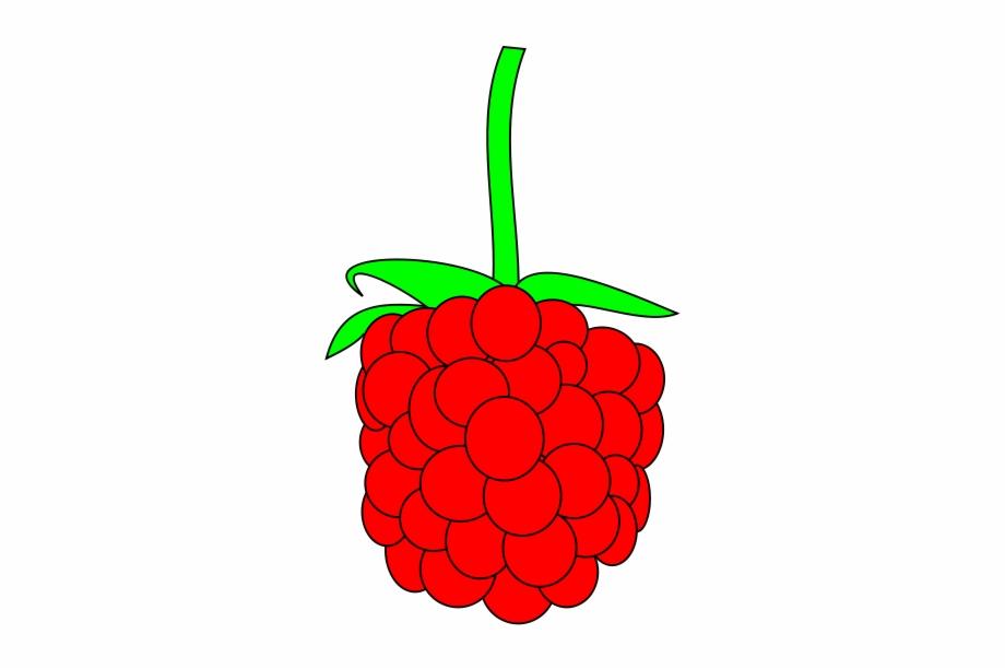 Simple Raspberry.