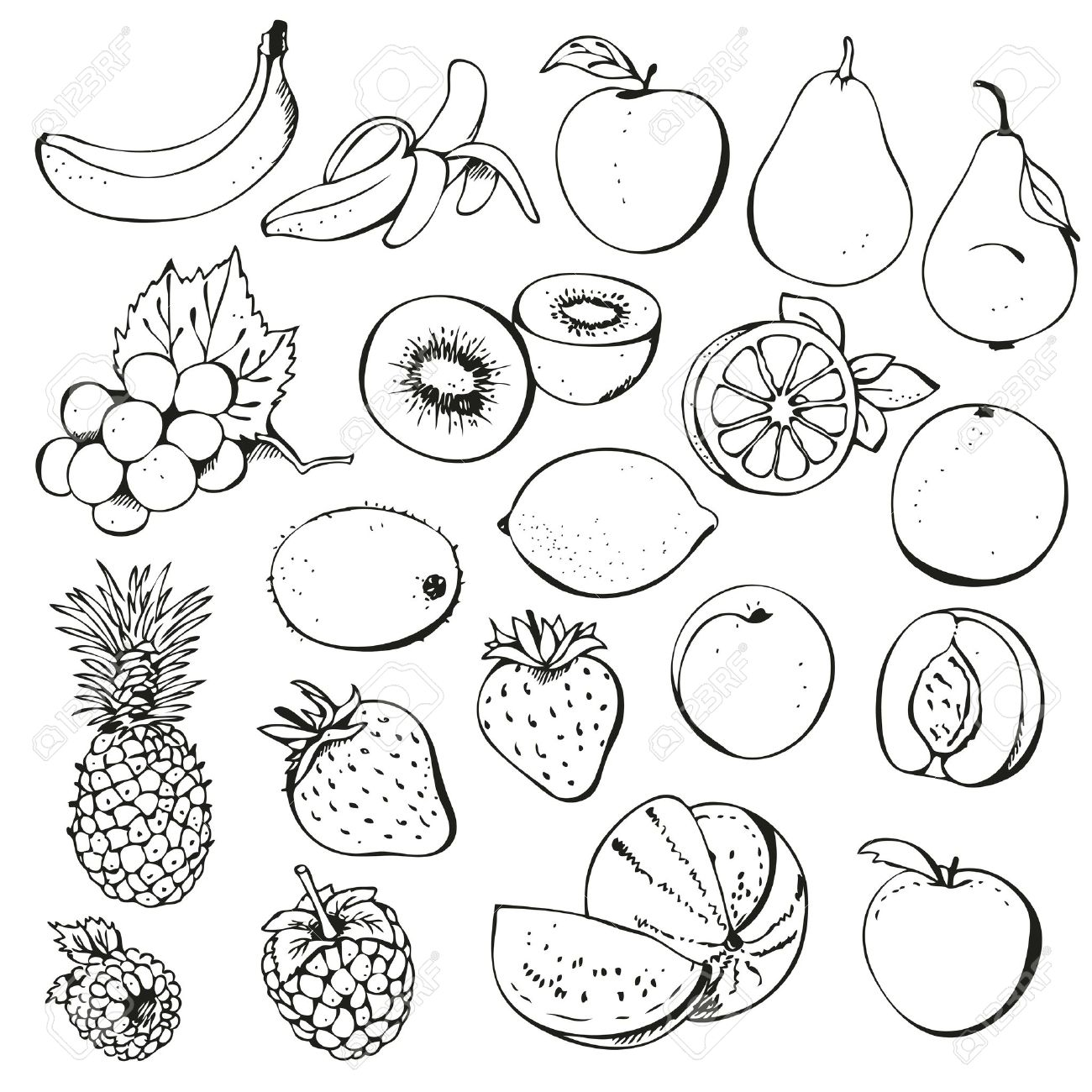 Clipart outline fruits.