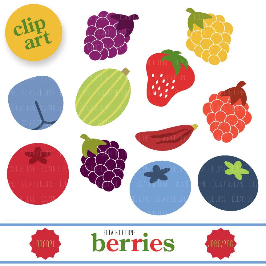 Berries Clipart.