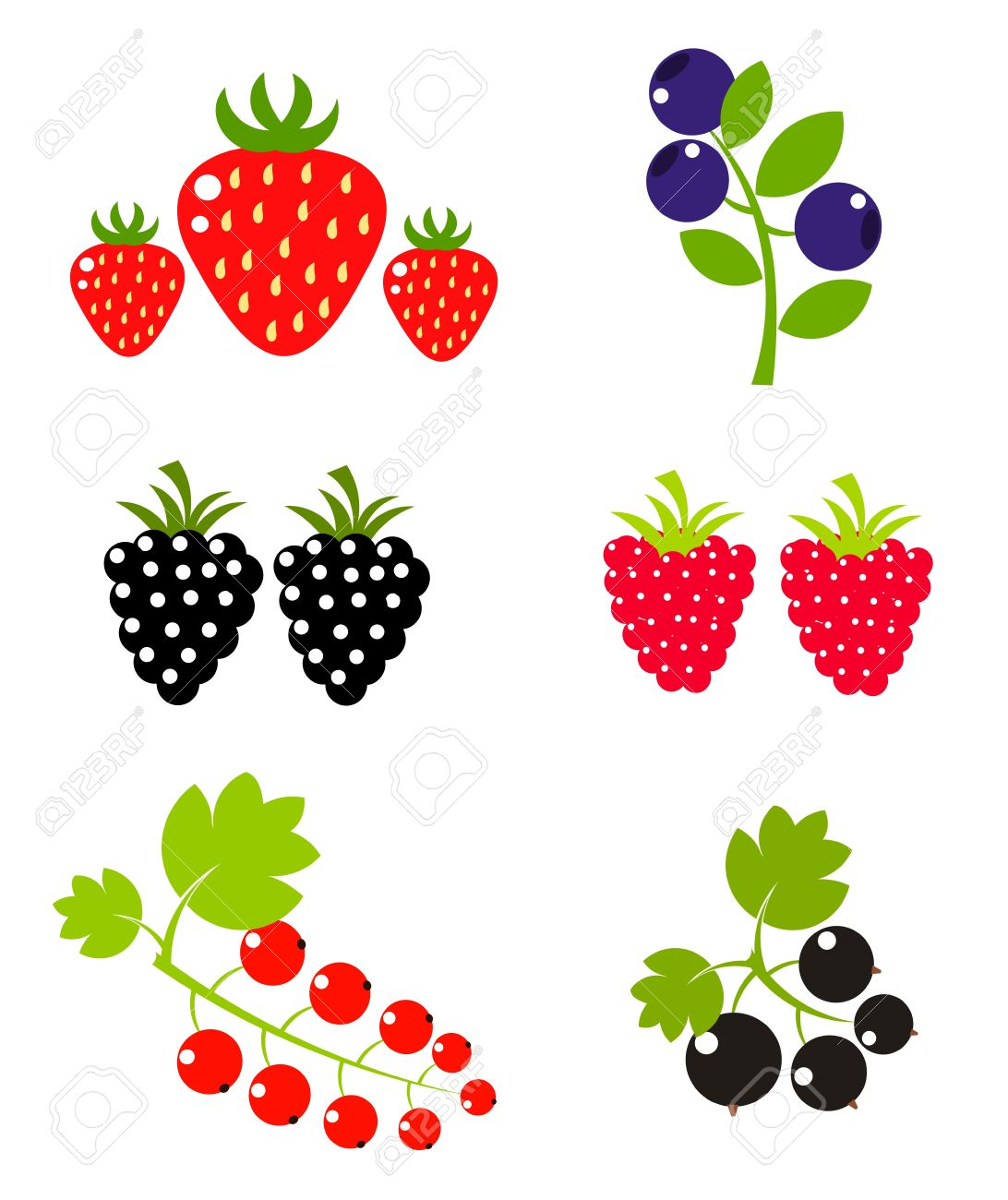 Berry Fruits Sweet Collection. Vector Illustration Royalty Free.