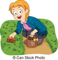 Berry picking Illustrations and Stock Art. 87 Berry picking.