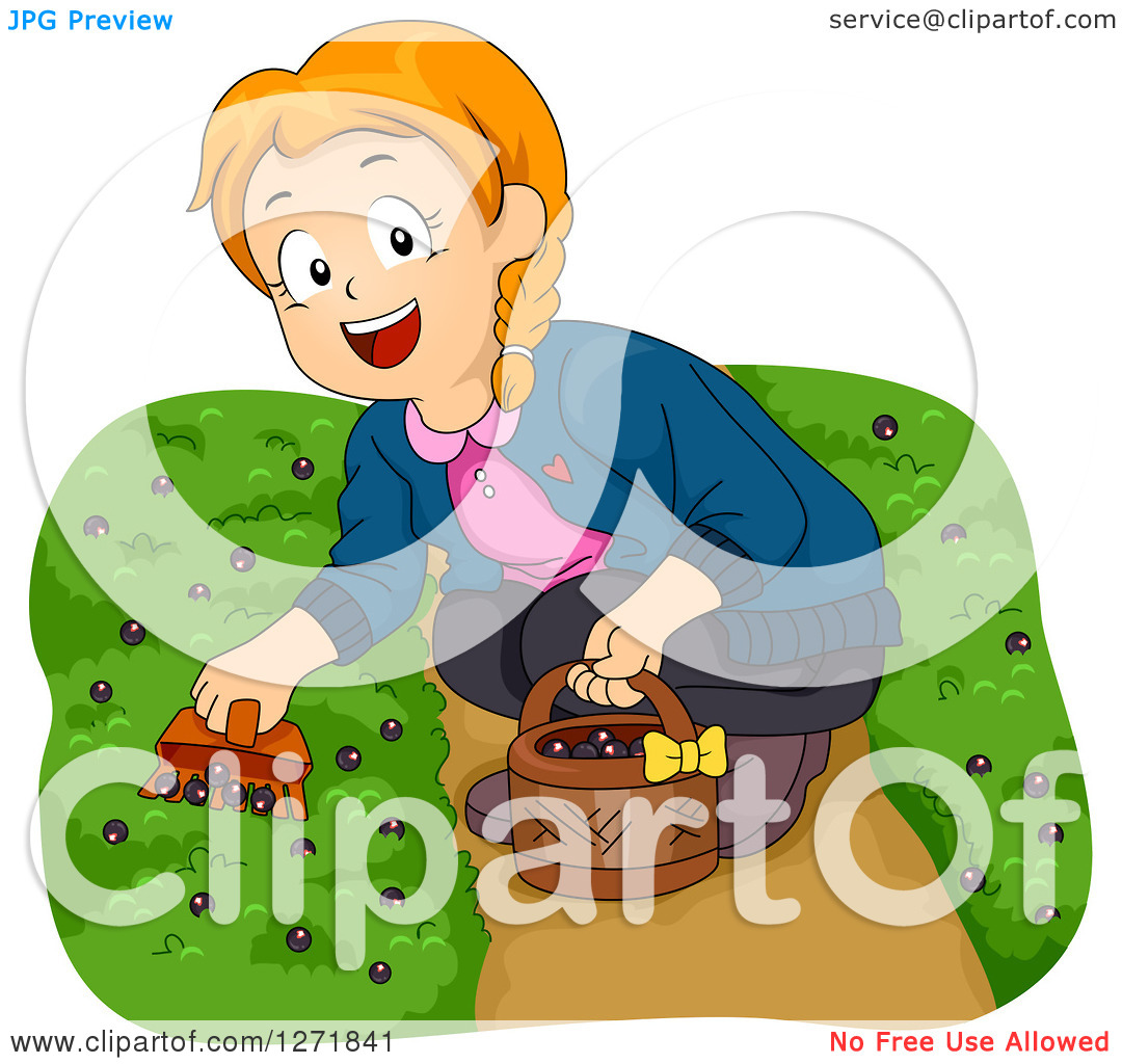 Clipart of a Happy Red Haired White Girl Picking Ground Berries.