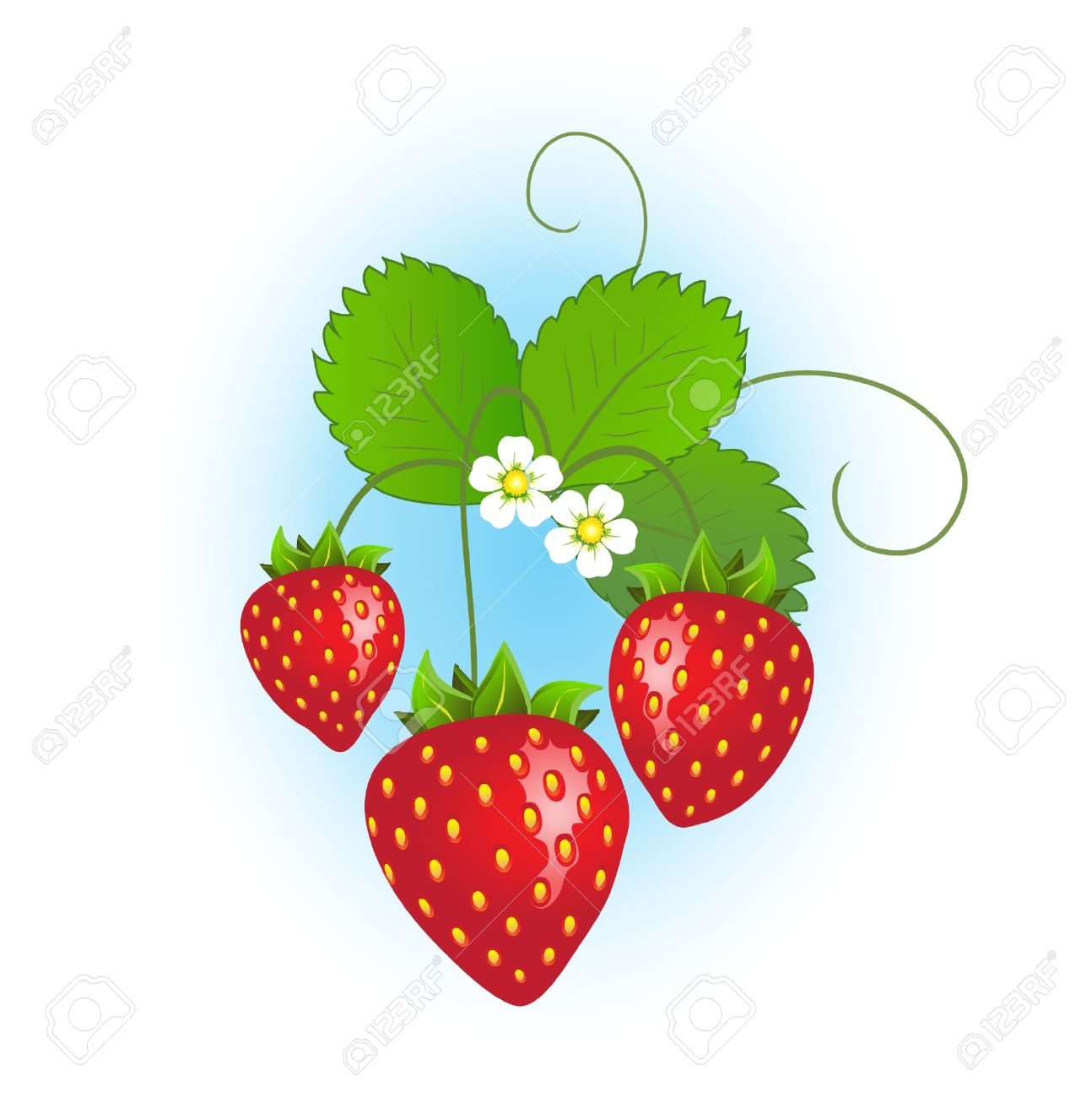 Berry Shrub In Bloom Clipart 20 Free Cliparts Download