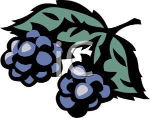 Art Image: Blackberries on the Vine.