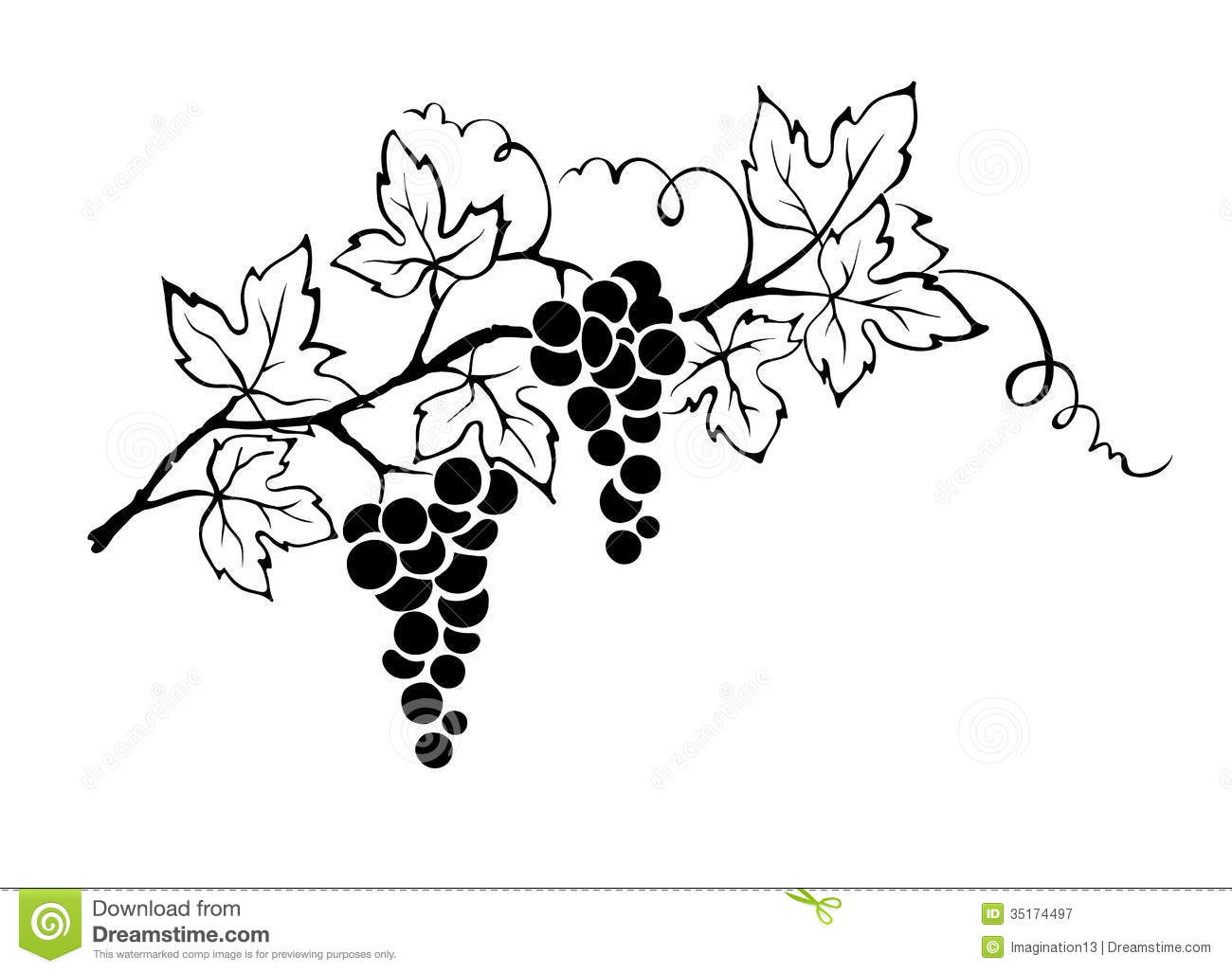 Free clipart grapes and vines.