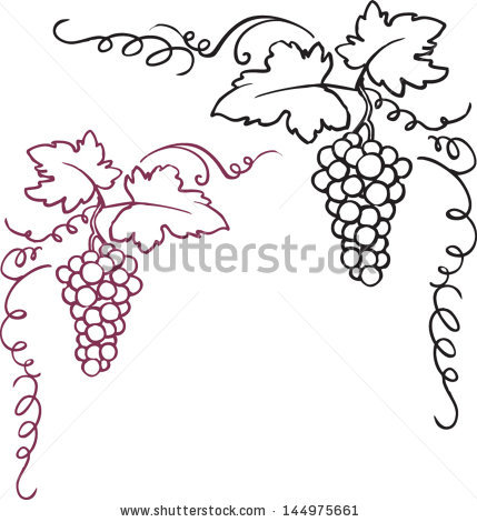 Vine and berries clip art Free vector for free download about (3.