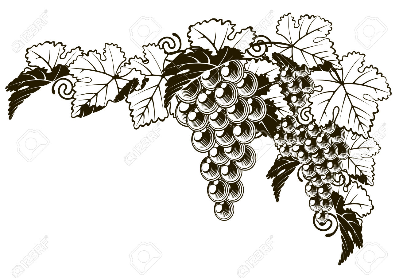 Clip Art Berry Images & Stock Pictures. Royalty Free Clip Art.