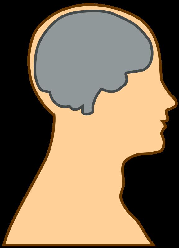 Simple brain clipart.