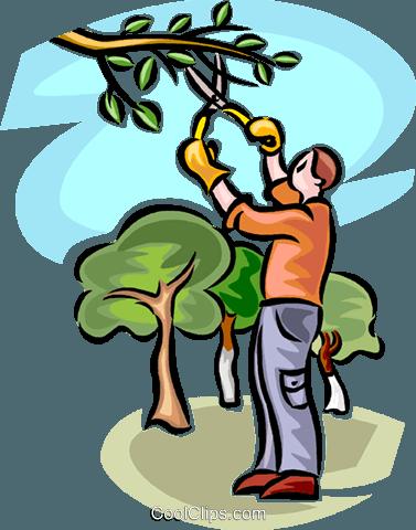 Mann Beschneiden eines Baumes Vektor Clipart Bild.