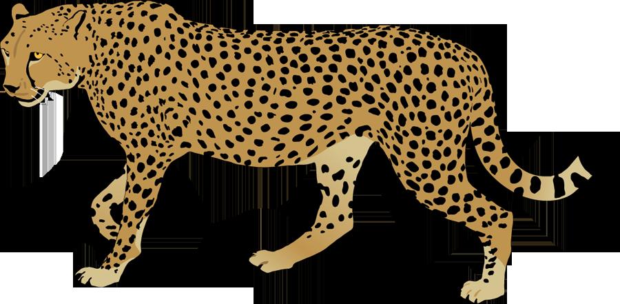 Best Cheetah Clipart #15014.