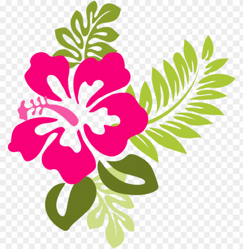 very best clipart flower free hibiscus clipart collection.