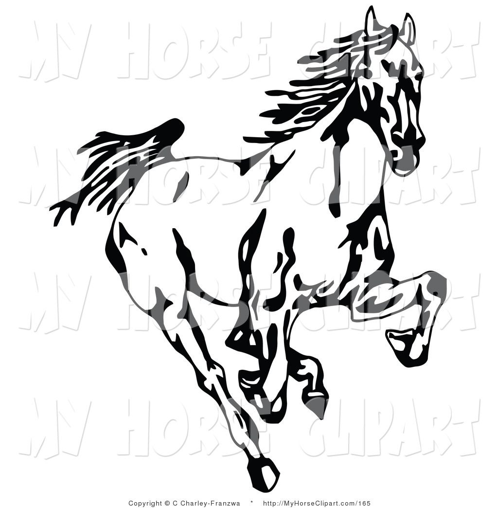 Clip Art of a Black and White Wild Mustang Horse Running.