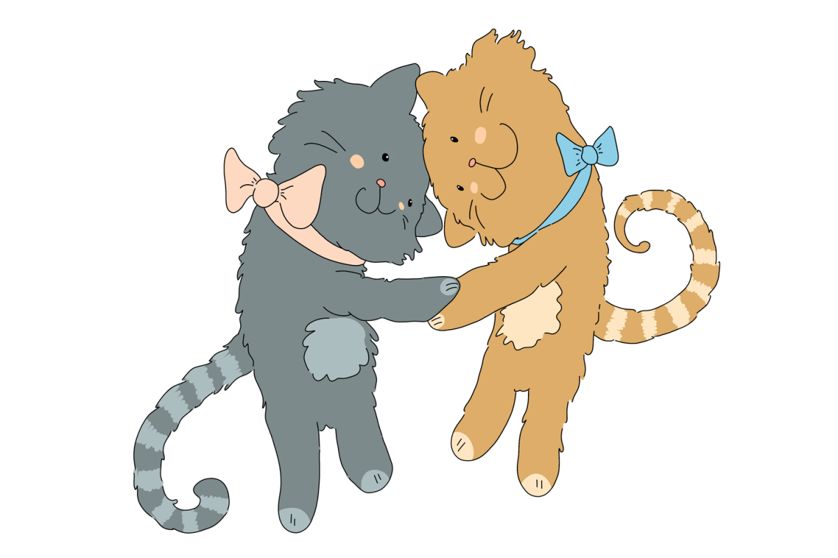 Hugging Cats.