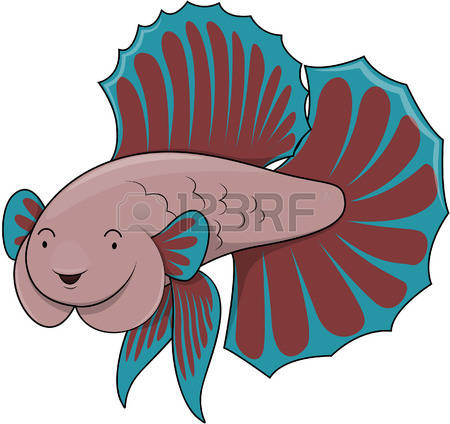 165 Betta Fish Stock Vector Illustration And Royalty Free Betta.