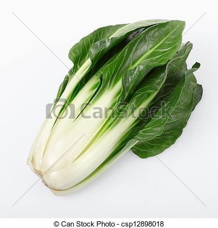 Stock Photography of Beet or Beta vulgaris on white.