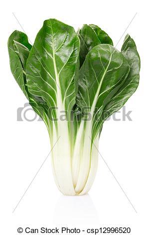 Stock Photo of Beet or Beta vulgaris on white.