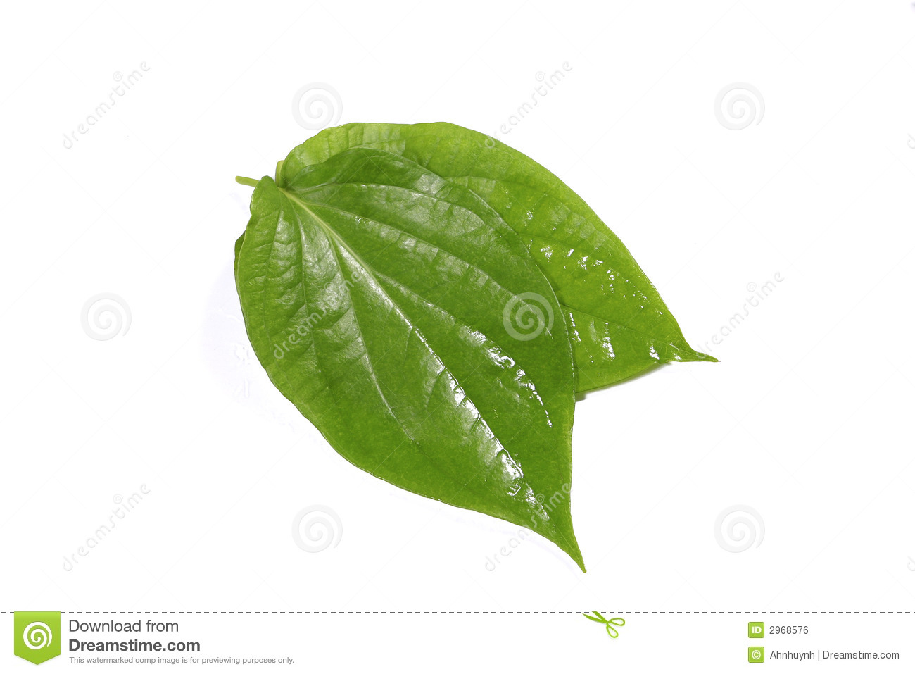 Betel Leaf Stock Photos, Images, & Pictures.