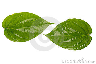 Fresh Betel Leaves And Areca Nut Stock Photos.