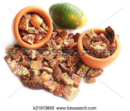 Stock Photograph of Betel Nut or Areca Nut k21973859.