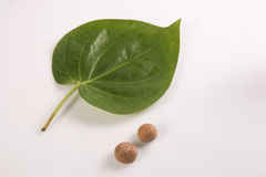 Betel Nut And Green Betel Leaf Stock Photo.