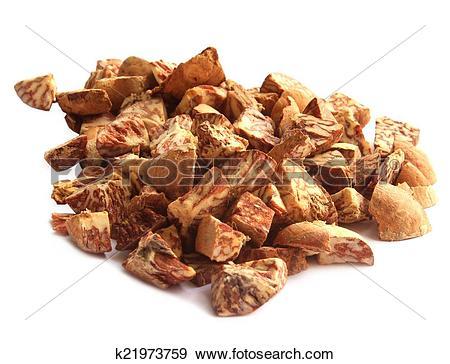 Stock Photograph of Betel Nut or Areca Nut k21973759.