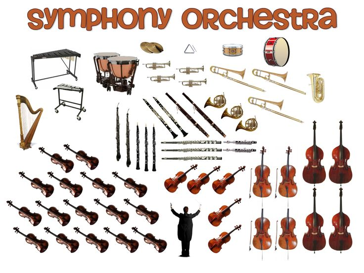 Beth S Music Notes Orchestra Pictures Mozart Music Camp Pinterest.