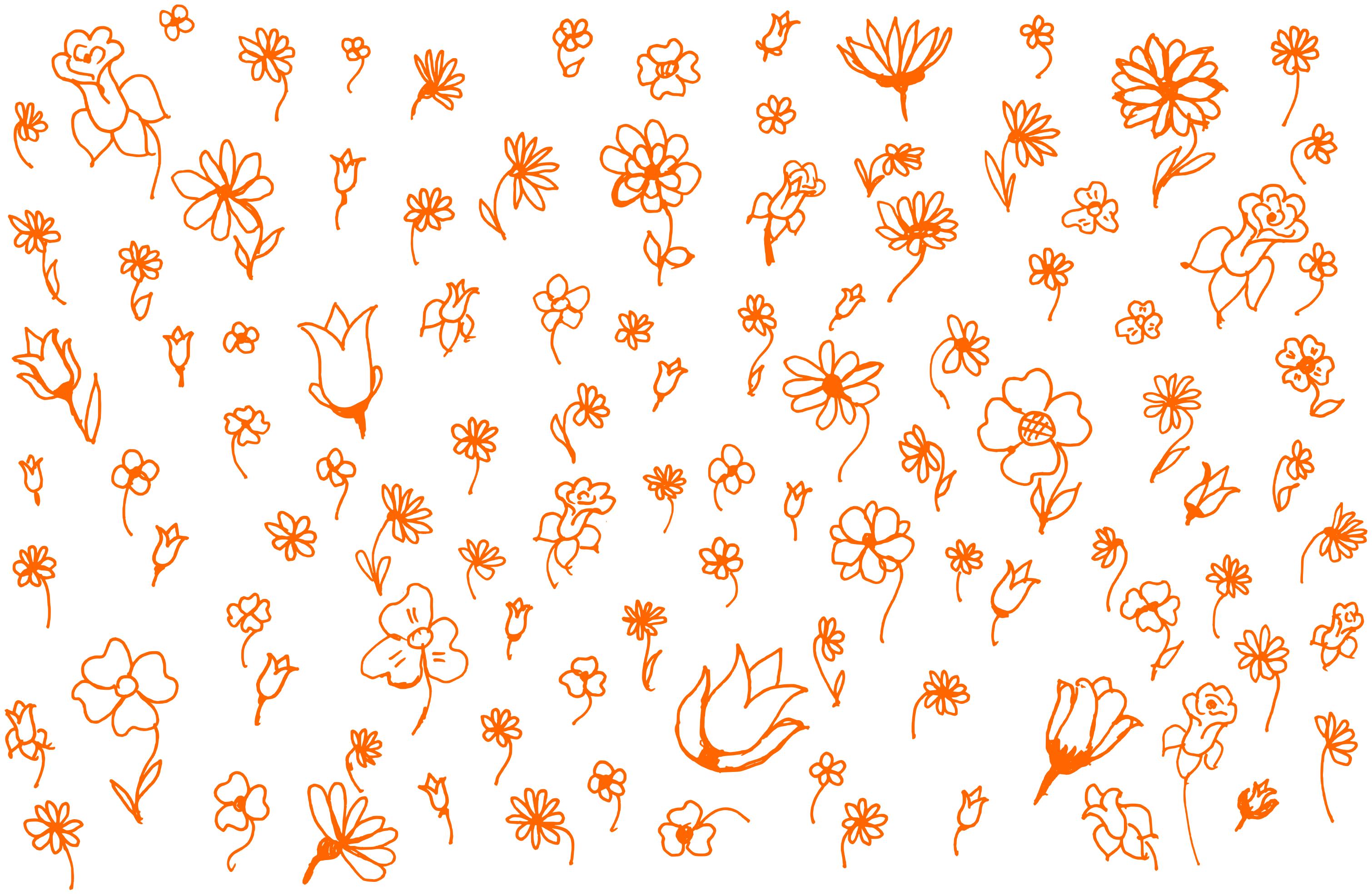 Flower Doodle Background (PNG).