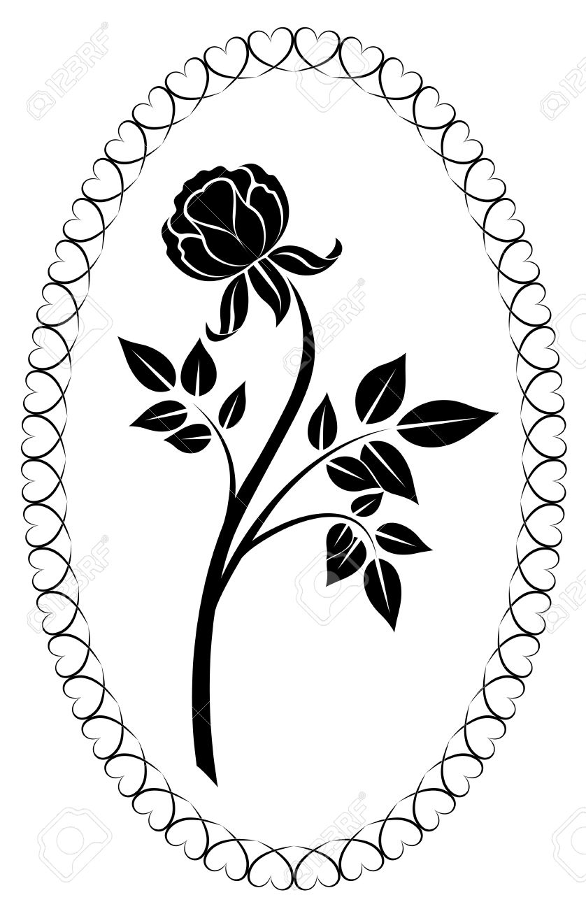 Clipart rosa bianca.