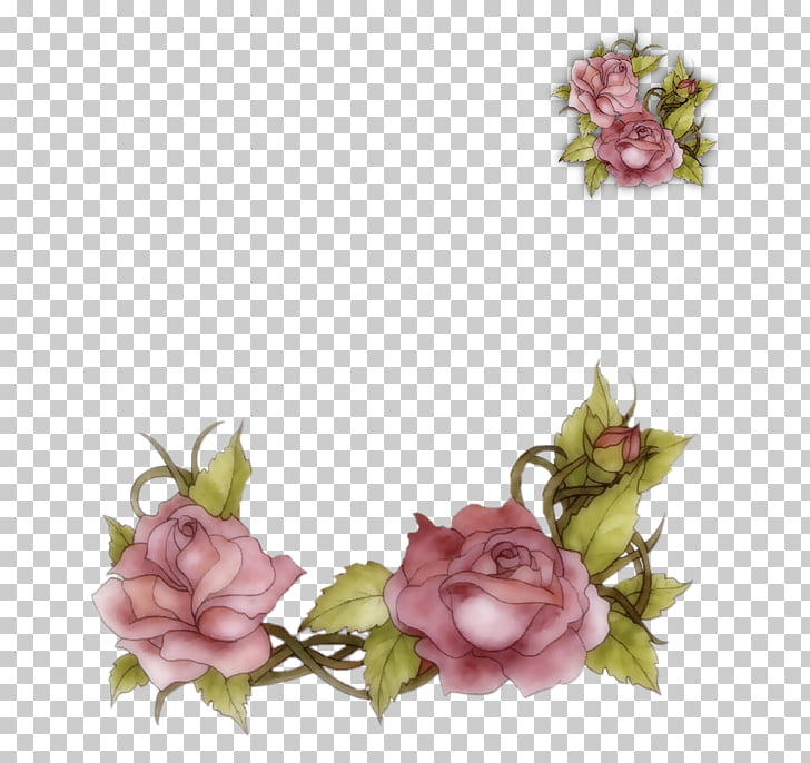 Garden roses Flower Bible Floral design, flower PNG clipart.