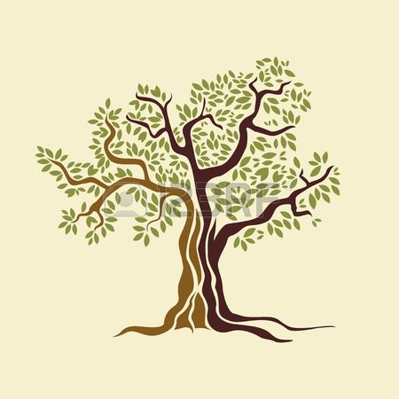 Bible clipart two olive trees clipart images gallery for.