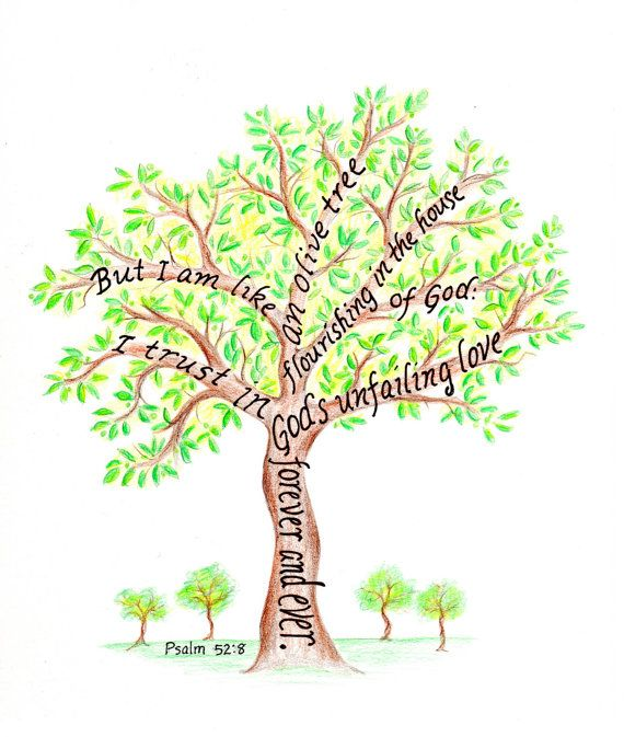 But I Am Like an Olive Tree Flourishing In The House of God.