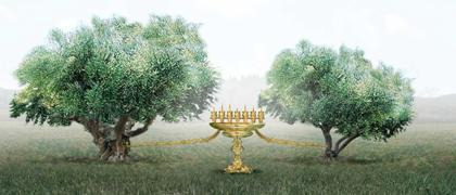 The Two Olive Trees.
