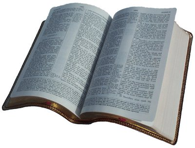 Biblia Png Sin Fondo 40789.