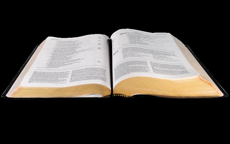 Biblia png sin fondo » PNG Image.