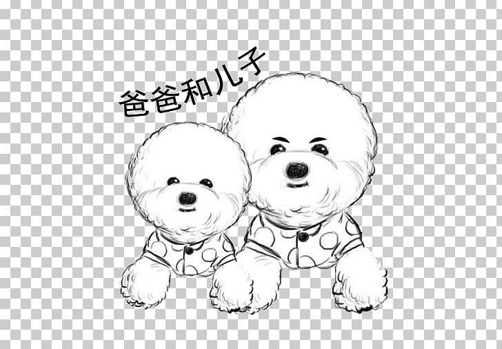 Bichon Frise Puppy PNG, Clipart, Animal, Animals, Bear.