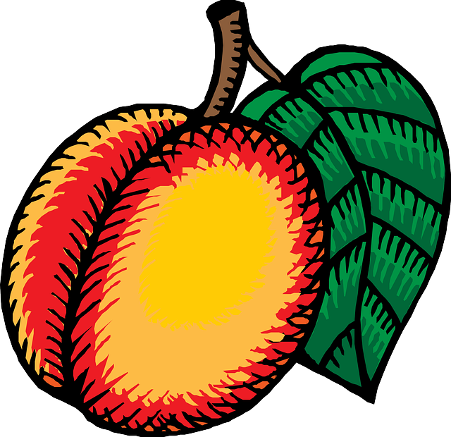 Vineyard nectarines clipart #2