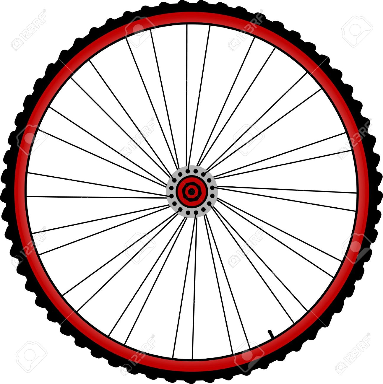 Bicycle Wheels With Spokes And Tires Isolated On White Royalty.
