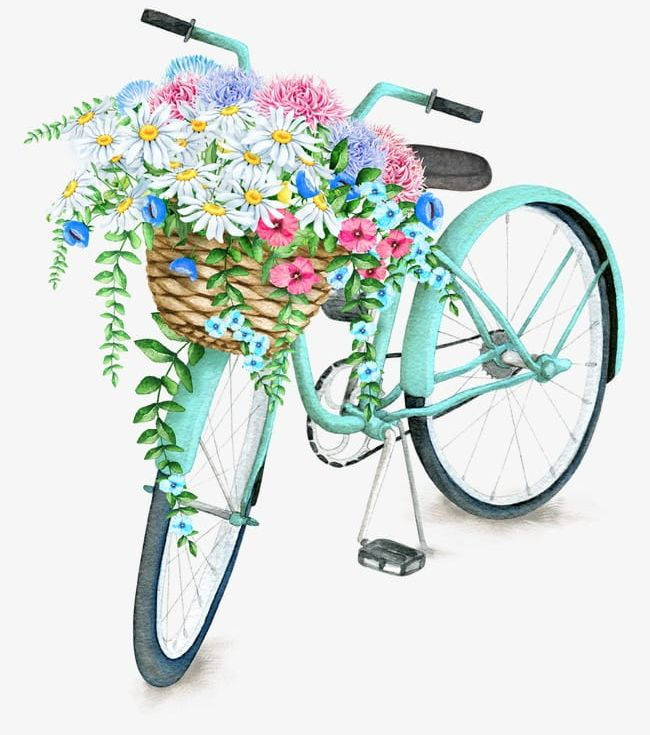 Exquisite Aesthetic Bicycle Basket PNG, Clipart, Aesthetic.