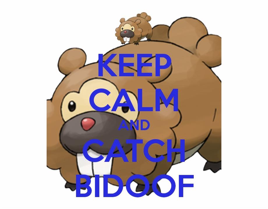 Keep Calm And Catch Bidoof.