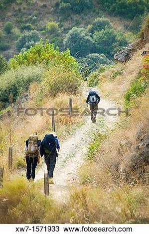 Stock Photo of Pilgrims walking by the Camino de Santiago at the.