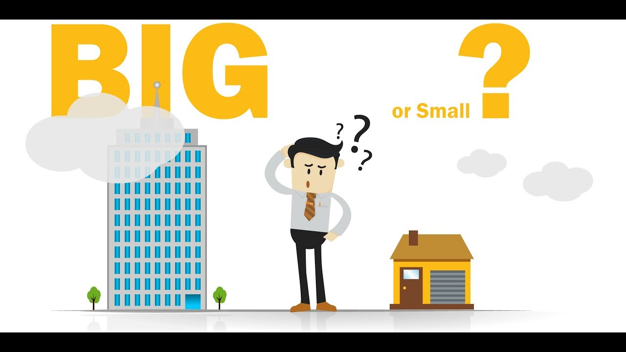 work for a big company vs a small company ?.