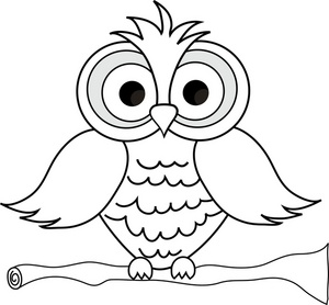 Wise Owl With Big Eyes On A Tree Limb In Black And White Smu clip.
